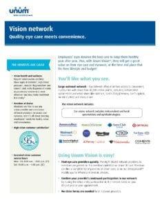 Vision Network Flyer