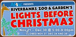 full_lights-before-christmas